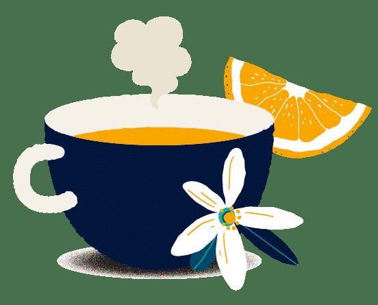 Biohême infusions bio tasses arômes